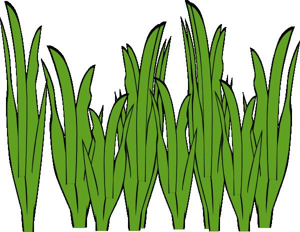 Seagrass Clip Art Clker Vector