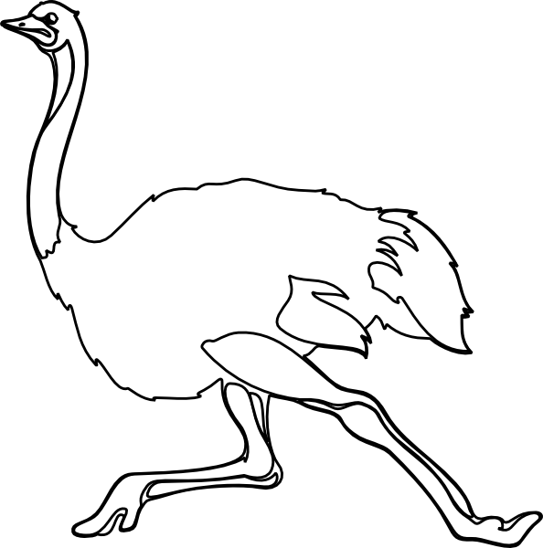 Ostrich Outline Clip Art at Clker.com - vector clip art ...