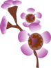 Flower Purple Clip Art