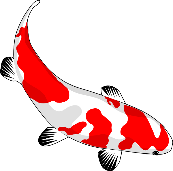 Koi fish clip art at vector clip art online for Koi fish vector