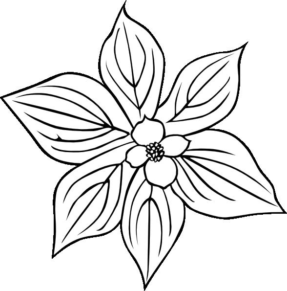 wild flower with petals clip art at clker com