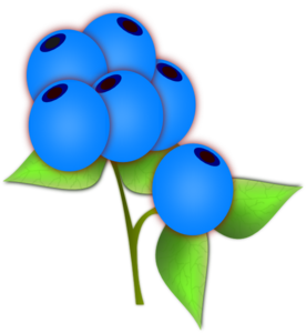 Blueberries Clip Art