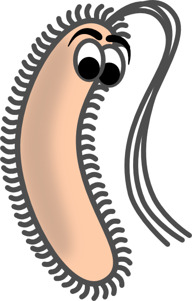 Funny Bacteria Clip Art At Clker Com