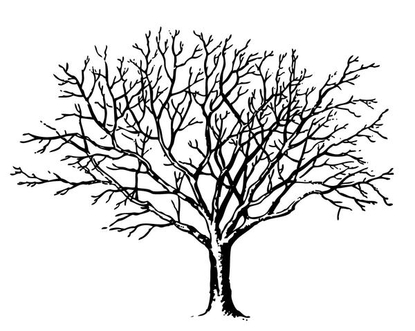 req tree spooky graphicsfairy c