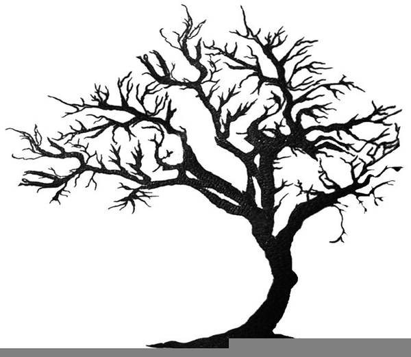 Free Oak Tree Clipart Free Images At Clker Com