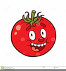Cartoon Tomato Clipart Image