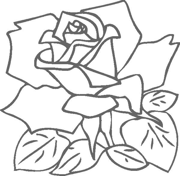outline rose clip art at clker com