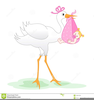 Free Clipart Stork With Baby Boy Image