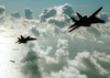 F/a-18 And F-14 Assigned To Cvw-17 Return To Ship Image