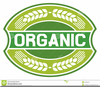 Organic Produce Clipart Image