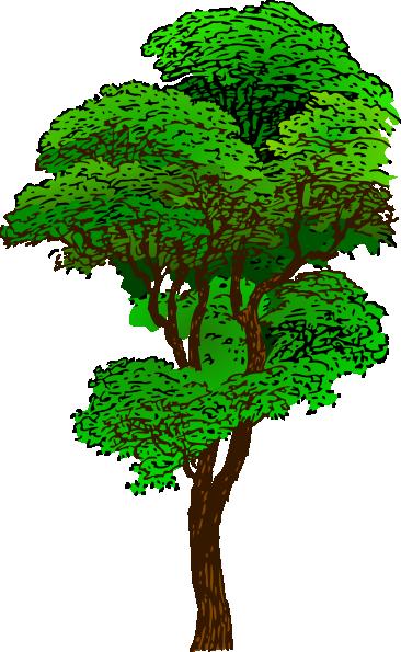 أشجار كرتون