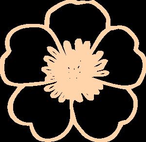 Cream Buttercup Flower Clip Art At Clker Com Vector Clip