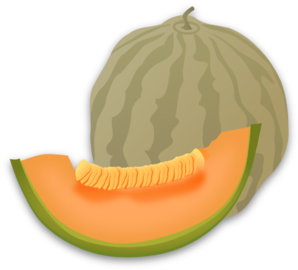 Musk Melon Clip Art at Clker.com - vector clip art online ... Honeydew Melon Clip Art