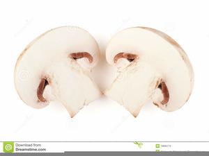 Enjoyable Clipart Of Sliced Mushrooms Free Images At Clker Com Download Free Architecture Designs Estepponolmadebymaigaardcom