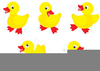 Mother Duck And Ducklings Clipart Image