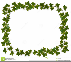 Christmas Graphics Clipart Ivy Image
