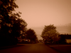 Neighbourhood Street In Southeast Richmond Sepia Image