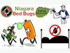 Hire Niagara Bed Bugs For Chemical Heat Treatment Services Image