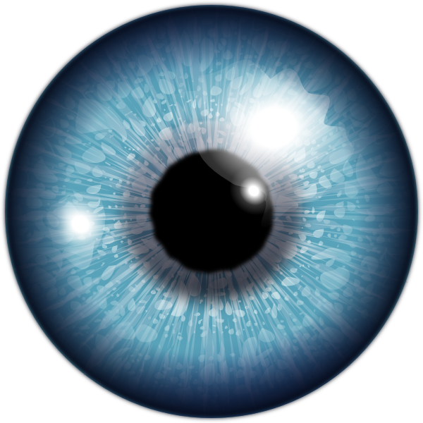 Blue Eye Clip Art at Clker.com - vector clip art online ...