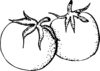 Tomatoes Black And White Clip Art