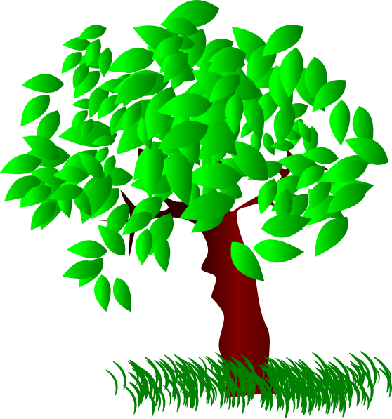 Tree Large Leaves Clip Art at Clker.com - vector clip art ...