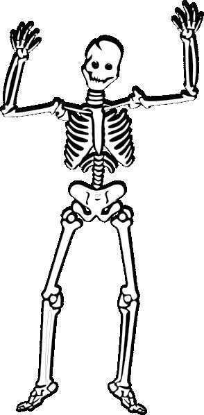 scary skeleton 2 clip art at clker com