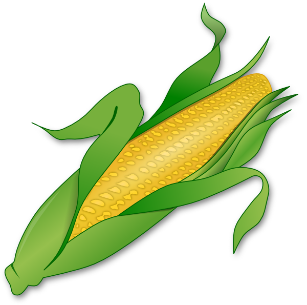 corn clip art at clker com vector clip art online corn on the cob clipart corn on the cob clip art free
