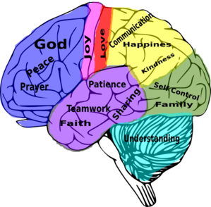Download Good Marriage On The Brain Clip Art at Clker.com - vector ...
