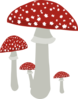 Red Topped Mushrooms Clip Art