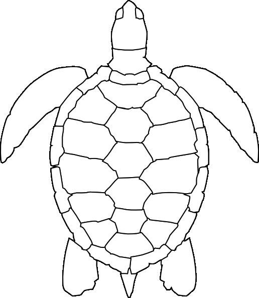 turtle outline clip art at clker com