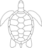 Turtle Outline Clip Art