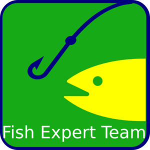Fish Expert Team Srl Clip Art