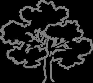 Grey Oak Tree Clip Art At Clker Com Vector Clip Art Online Royalty Free Public Domain