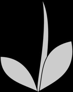 Gray Flower Stem Clip Art At Clker Com Vector Clip Art