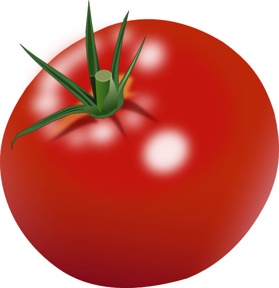 tomato clip art at clker com vector clip art online  royalty free   public domain clipart of math facts clipart of math homework
