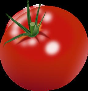Tomato Clip Art at Clker.com - vector clip art online ... Vector Tomato Png