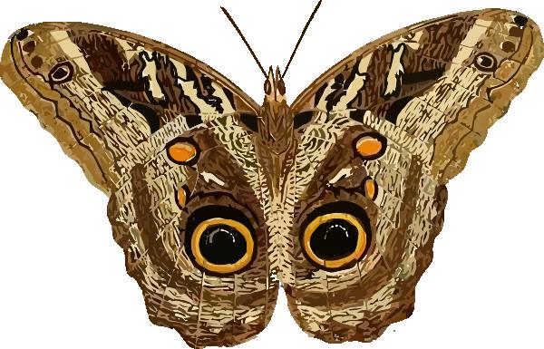moth clip art at clker com vector clip art online blue butterfly flying clipart blue butterfly clipart images