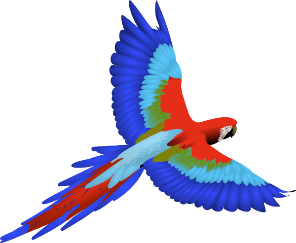 R G Parrott Ltd Parrot Clip Art at Clk...