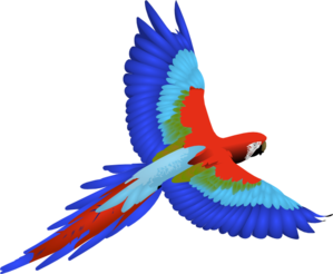 R G Parrott Ltd Parrot Clip Art at Clk...