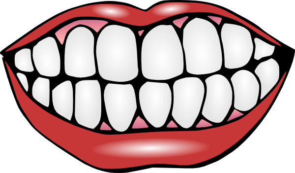 Mouth And Teeth Clip Art at Clker.com - vector clip art ...